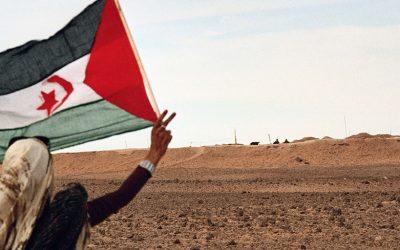 Western Sahara: Africa's last colony
